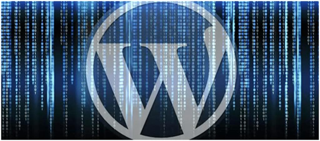 The-Vulnerability-of-WordPress-1080x477